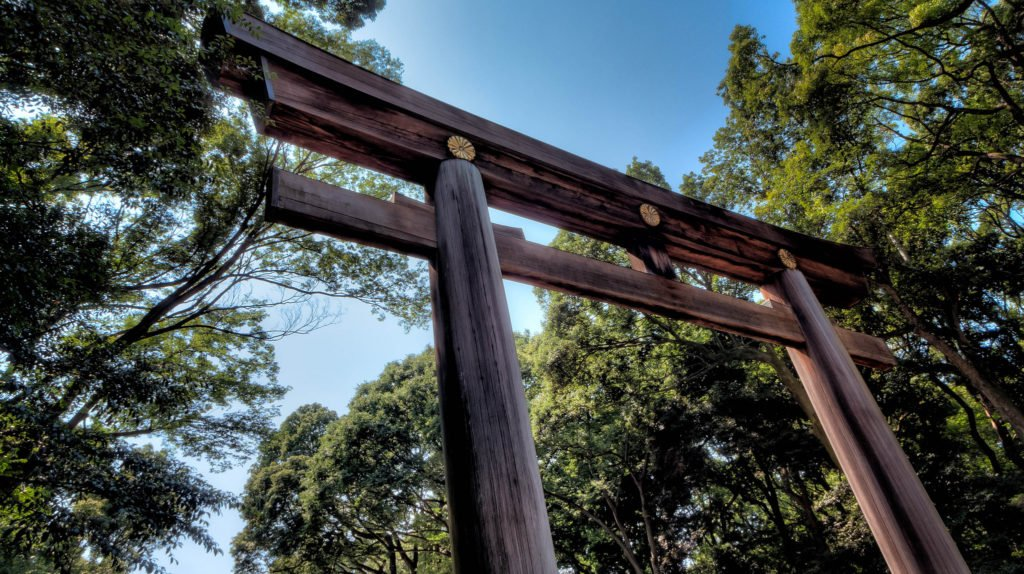 Tori Gate at Meiji Shrine