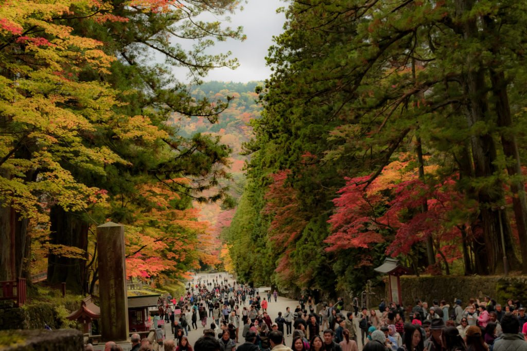 Nikko in autumn is a beautiful experience