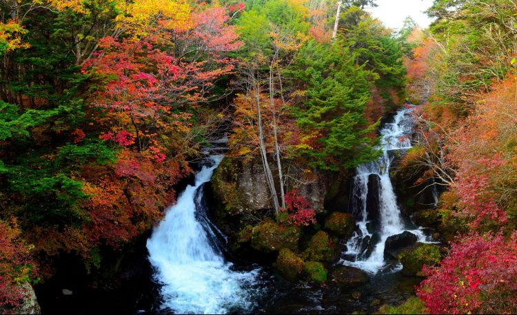 There is plenty of nature in Nikko